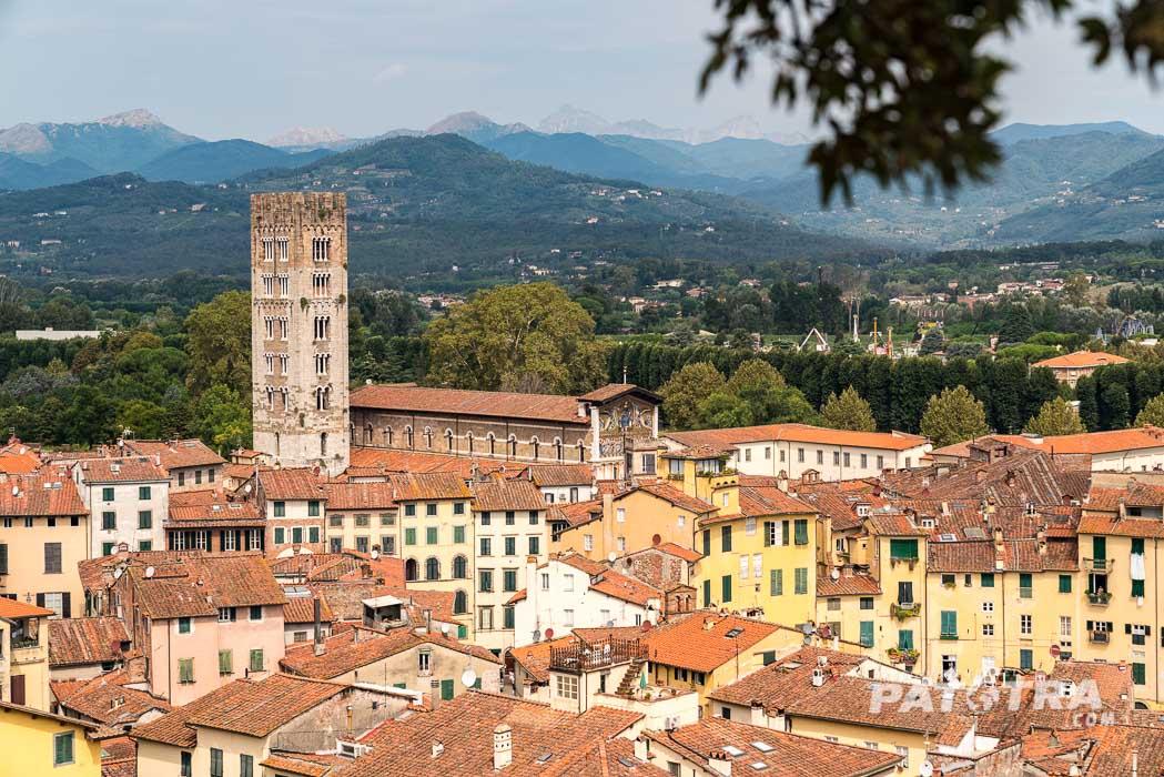 Blick Torre Guinigi