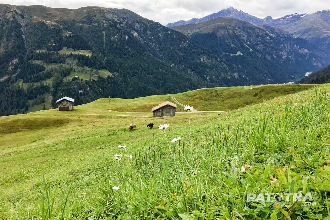Das Landschaftsbild auf dem Safientaler Walserweg. Walserhäuser, Wiessen und Berge
