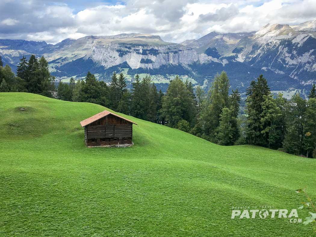 Der Ausblick über die Wiesen auf das Tal