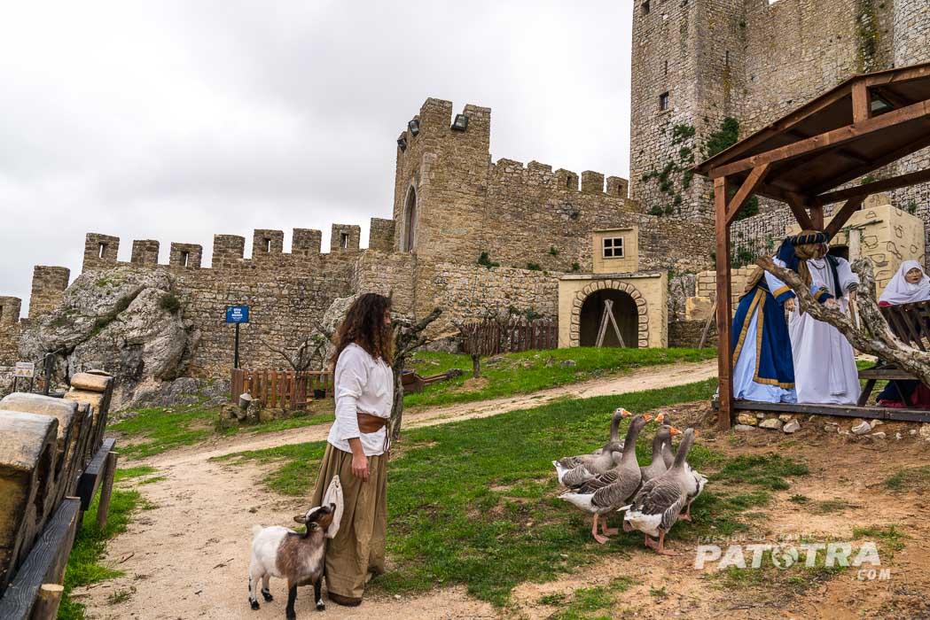 Gänse vor der Burg von Obidos