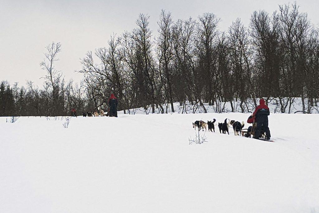 Tipps für coole Outdooraktivitäten in Norwegen im Winter