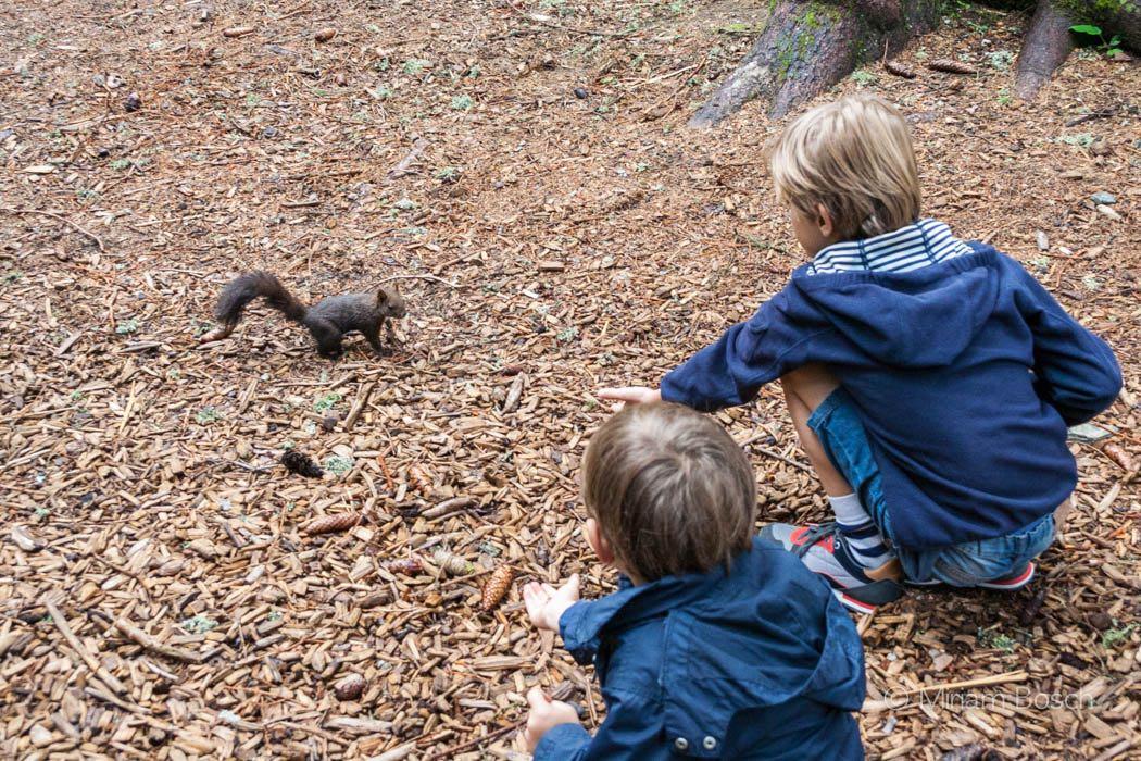 Kinder mit Eichhörnchen
