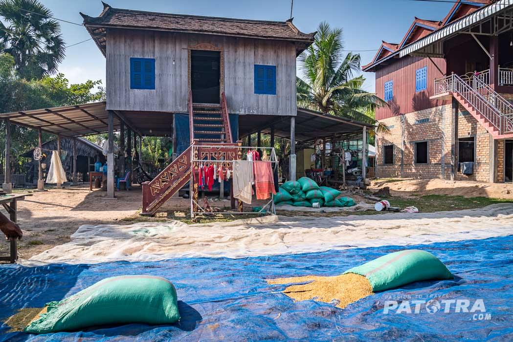 Vor den einfachen Häusern wird Reis zum Trocknen ausgelegt