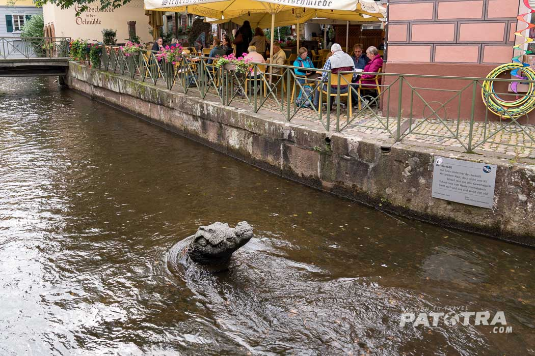 Krokodil freiburg