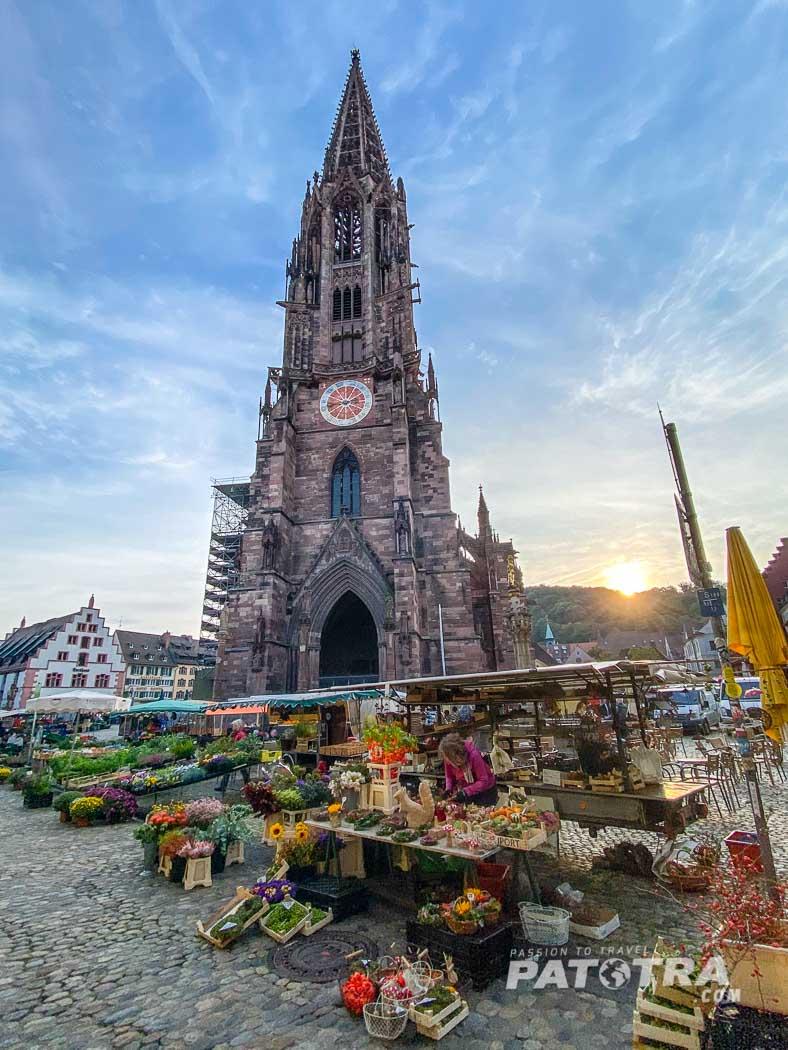 Markt in Freiburg i.Br.