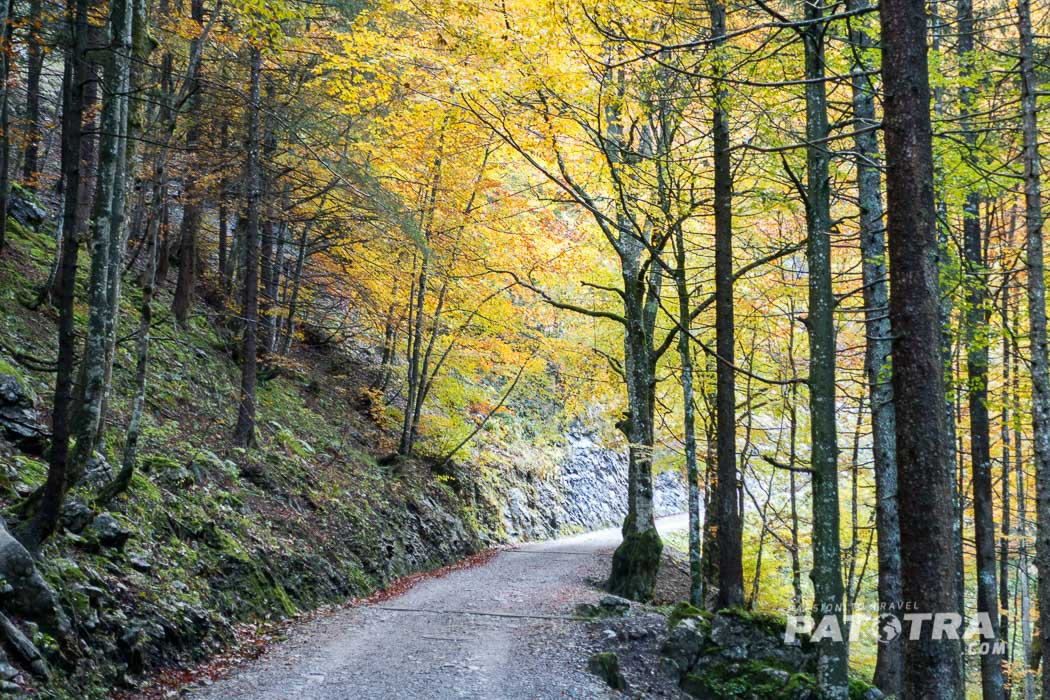 Herbststimmung im Alpstein